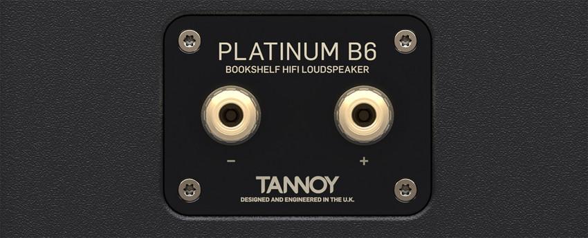 platinum_b6