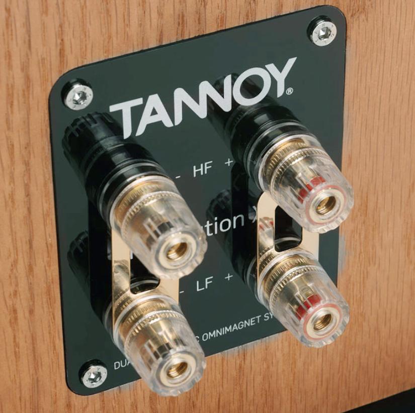 tannoy_revolution_xt6