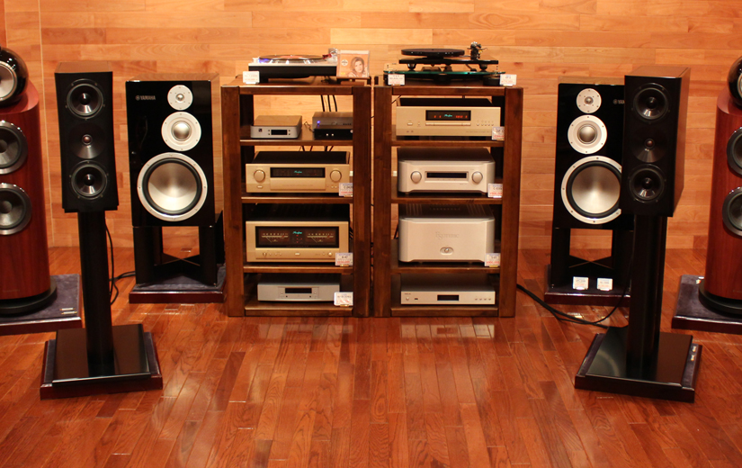 YG Acoustics Sonja 1.1