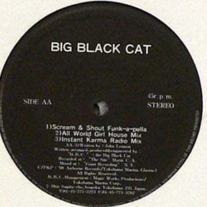 商品詳細 : 【USED・中古】BIG BLACK CAT (12) SCREAM & SHOUT