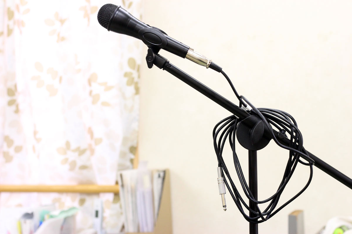 MIC AND STAND