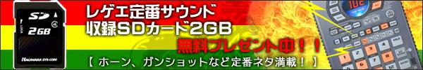 ���Q�G�l�^��^SD�J�[�h2GB�v���[���g�I